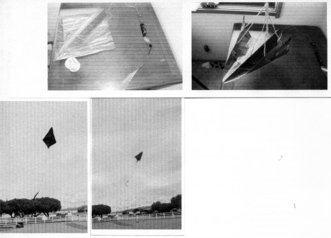 http://aka.kite.org/images/agorapro/attachments/4134/Sinatra-Rogallo-Flexikite.jpeg